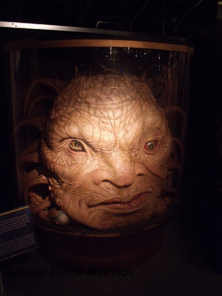 Doctor Who experience (4)