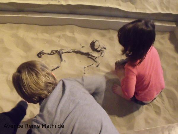Chantier de fouilles au museum de Bruxelles