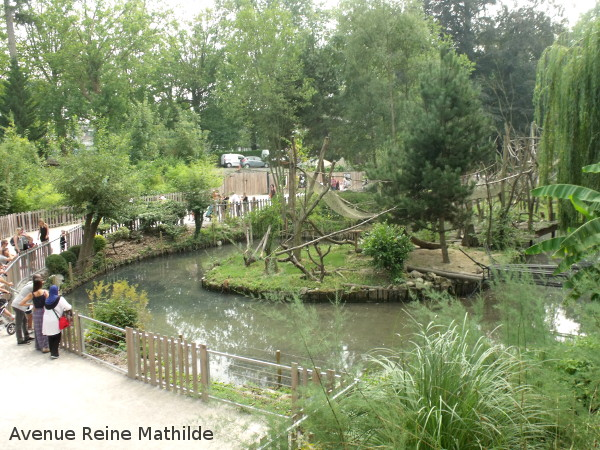 Les îles des singes au zoo du parc de la citadelle