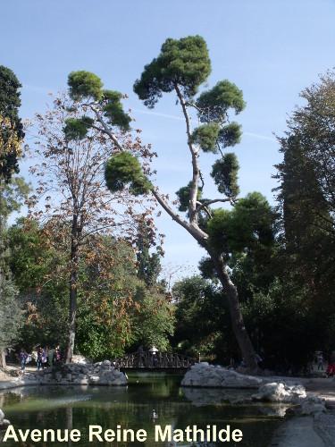 jardin national (1)