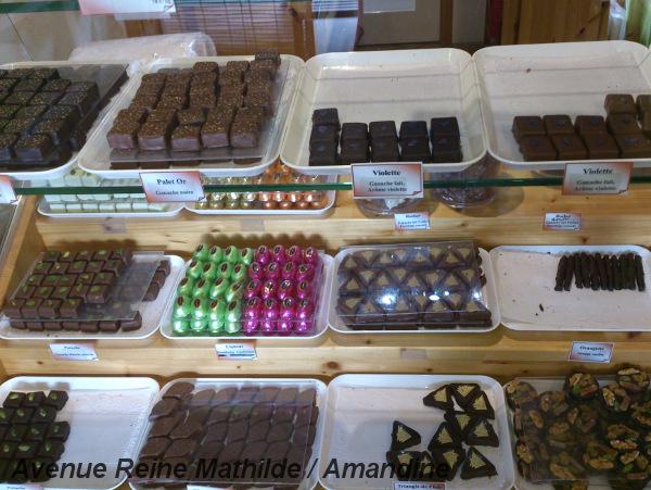 Chocolaterie Les triangles de l'Isle à l'Isle d'Abeau - Isère (mars 2014)
