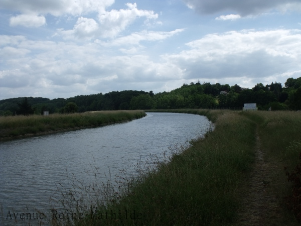 Le canal retrouve son cadre paisible après le passage de la Loire