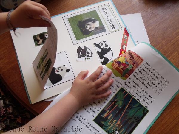 Extrait de notre lapbook sur le panda avec un livre accordéon sur son alimentation.