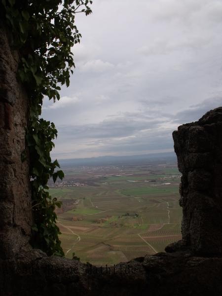 Vue depuis l'Ortenbourg