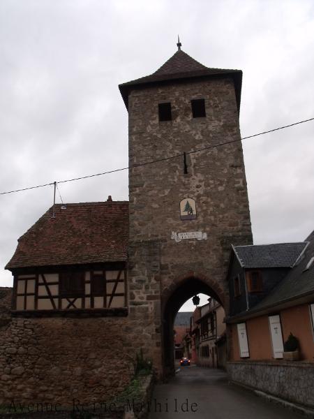 Dambach la ville (2)