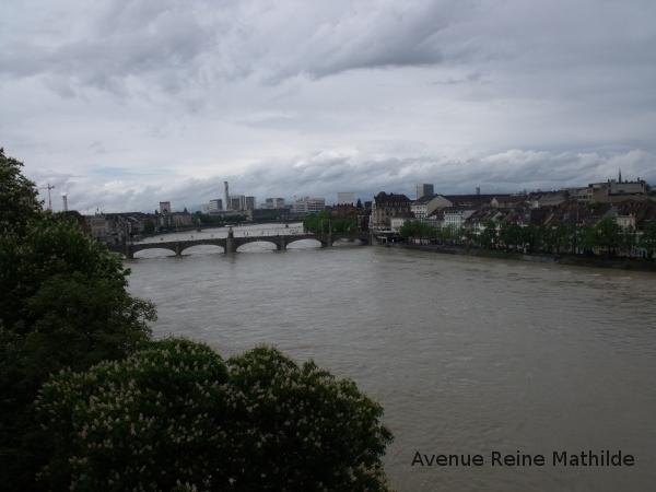 Vue sur le Rhin et une partie de la ville