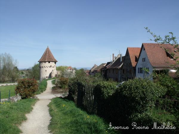 Bergheim remparts 2