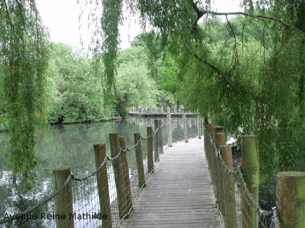 zoo mulhouse pont