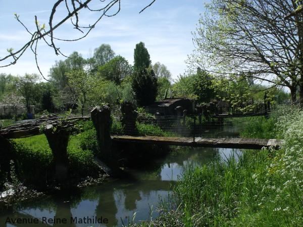 Bourges marais 2