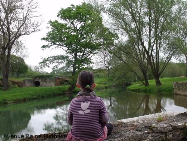 Vue sur un bras du canal depuis la forge de Buffon