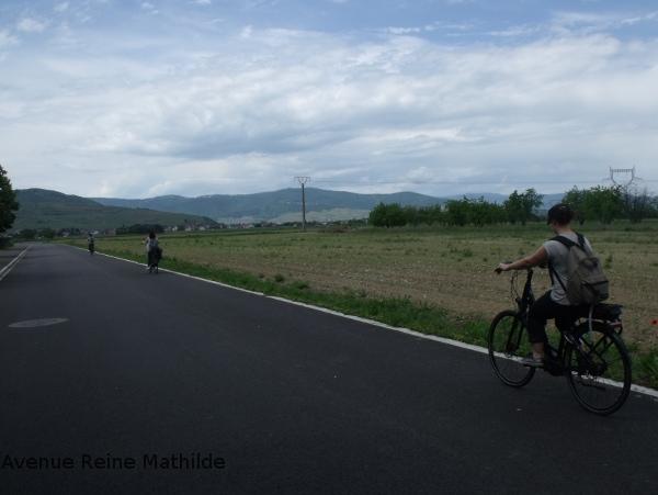 vélo Alsace