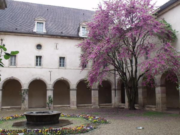 dijon musée vie bourguignonne