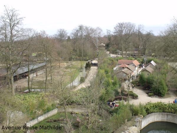 Vue sur le zoo de Planckendael