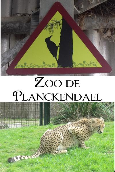 Planckendael , le zoo de Malines / Mechelen