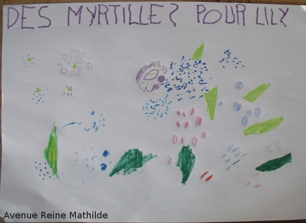 des myrtilles pour lily