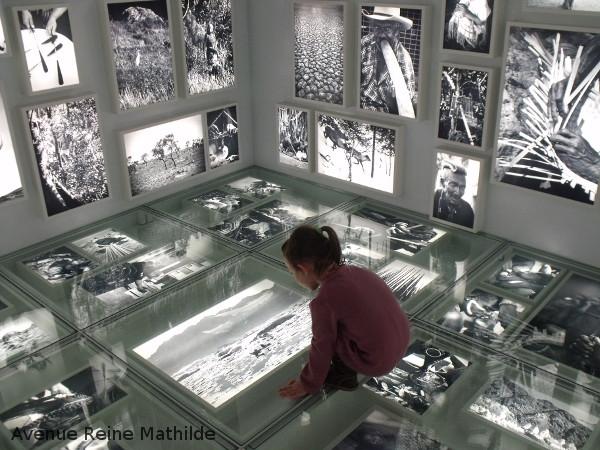 Exposition Tribu/s musée de l'homme