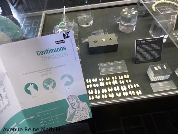 Carnac visiter musée de Préhistoire
