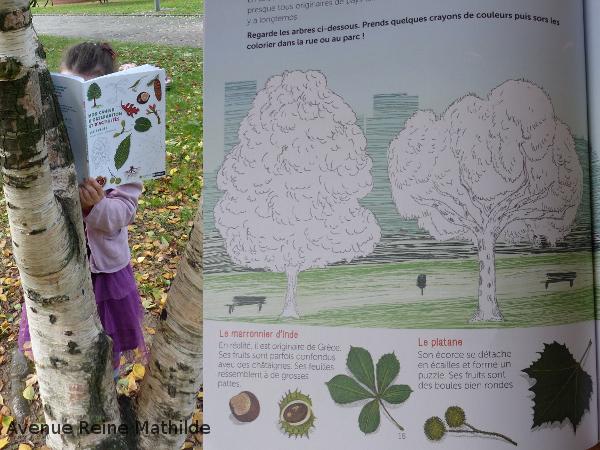 livre d'activités sur les arbres