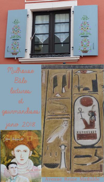 balades dans mulhouse et bâle