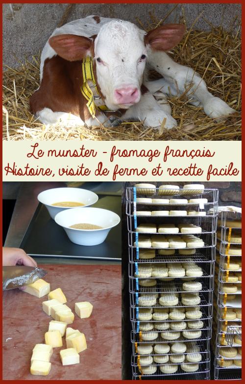 Munster visite de ferme et recette de cuisine