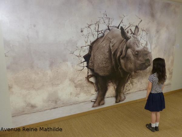 musée papier peint Alsace