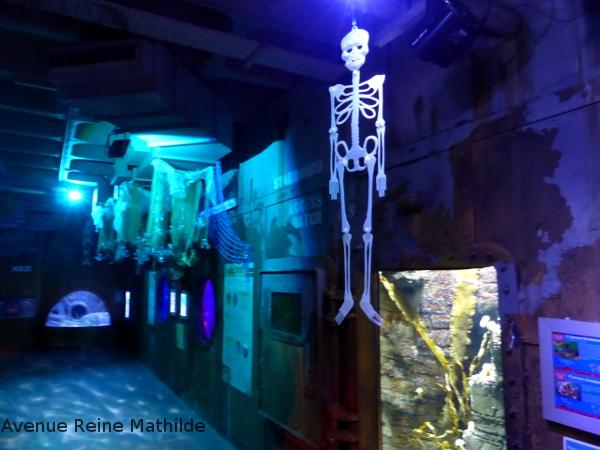 Bristol aquarium halloween
