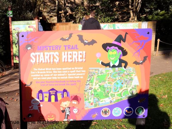 Animations Halloween au zoo de Bristol