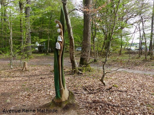 Un dimanche en forêt dans le Loiret