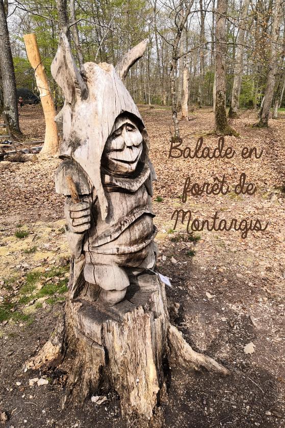 balade forêt de Montargis
