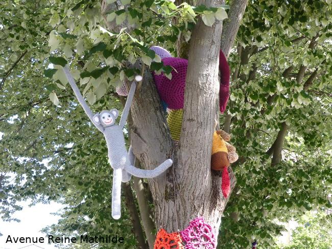 Singes dans les arbres à Mulhouse