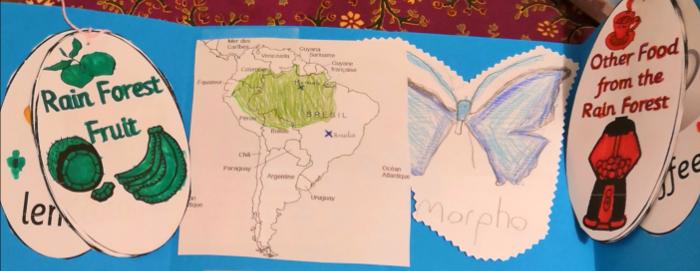 Lapbook sur l'Amazonie