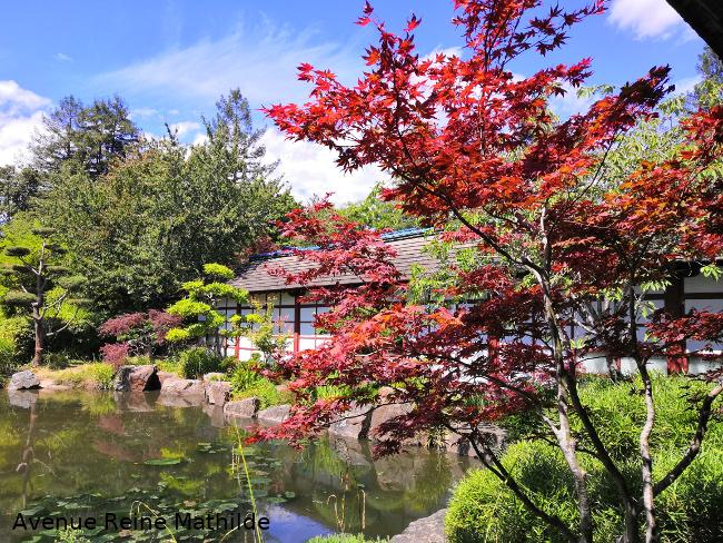 Japon île de Versailles Nantes